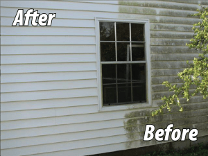 before and after - see the mold disappear
