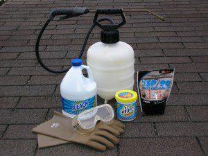 a photo of bleach and oxi clean